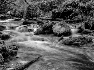 river-trevillet-by-roy-backhouse