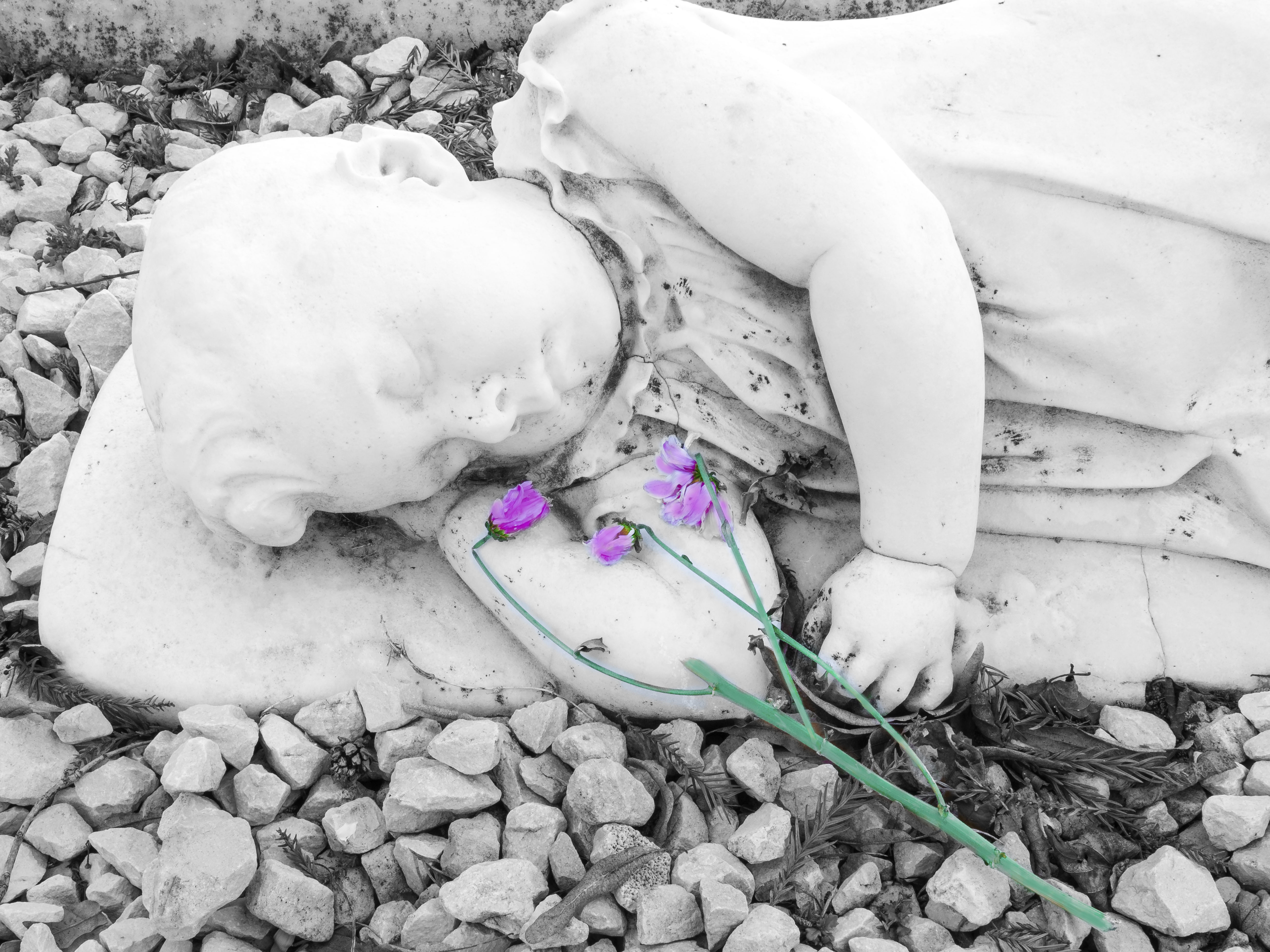 flowers-for-a-sleeping-child-by-aidan-huxford