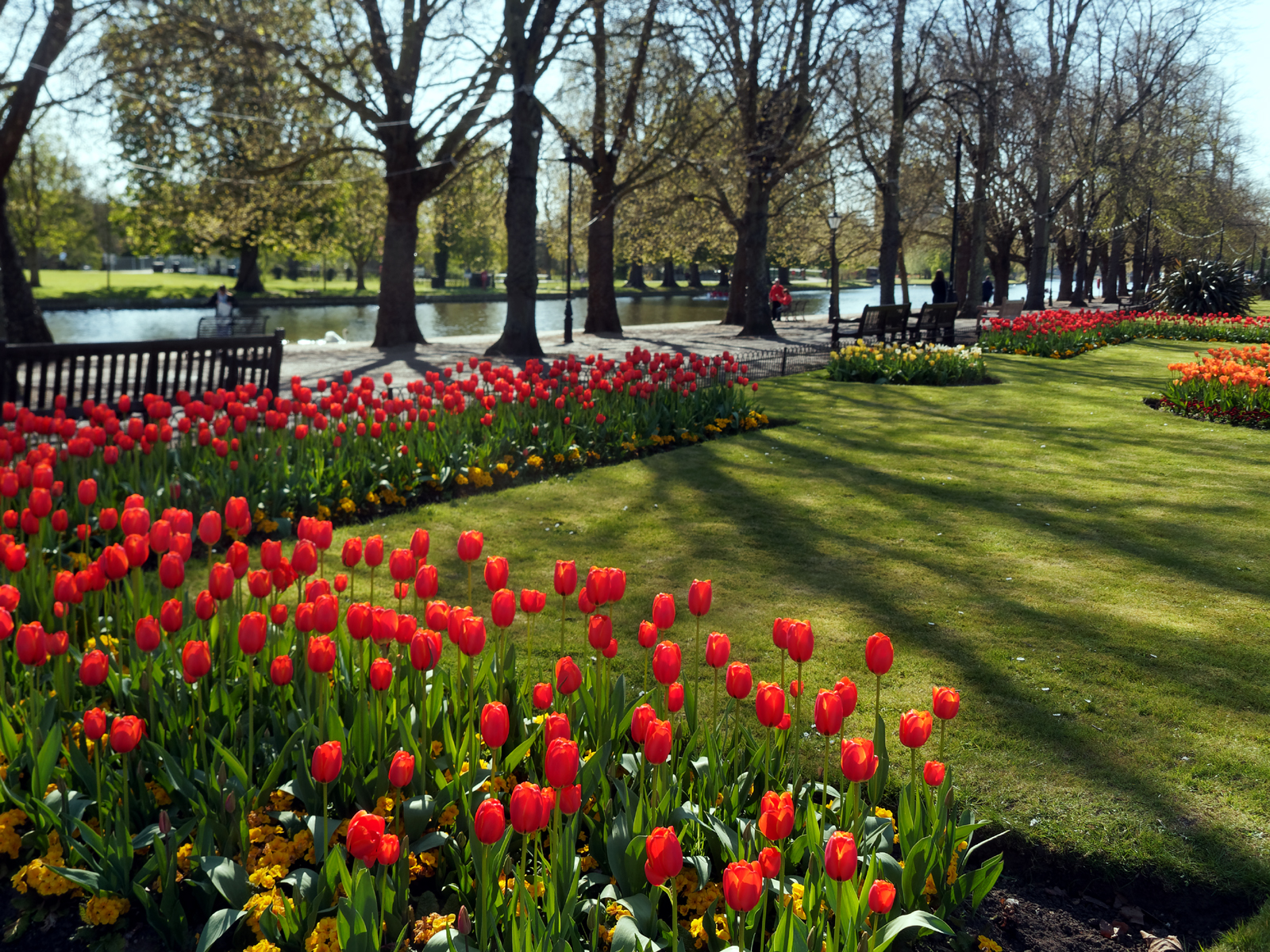 spring-on-the-embankment-by-laurie