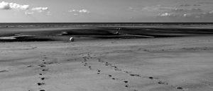 Empty sea and beach buoys by Richard