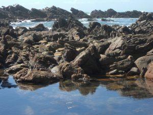 Rocky Bay by Janet