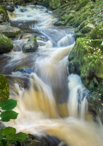 The Waterfall (print) by Peter Darby