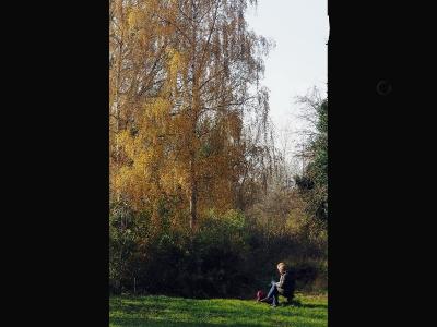 autumn-sun-by-laurie-jpg
