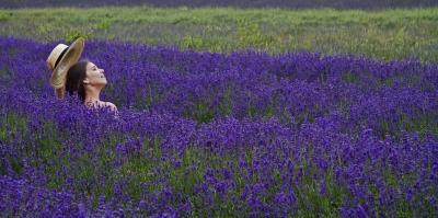 3rd - lavender-girl-by-alan-goldby