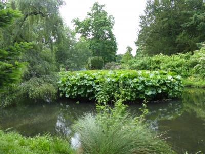 swiss-garden-by-janet