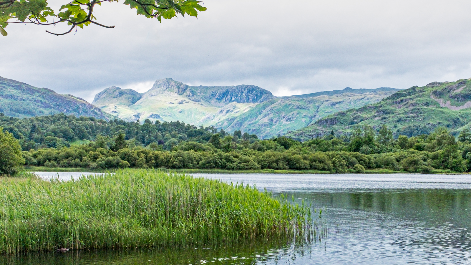 langdale-pike-over-elter-water-by-chris-frost.