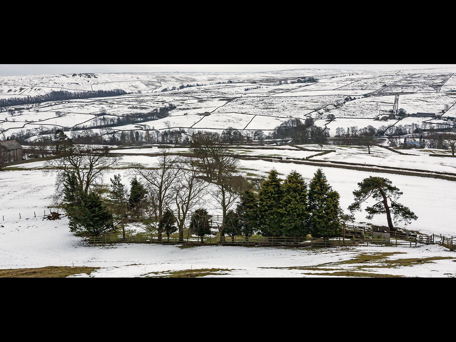 nidderdale-by-roy-backhouse.
