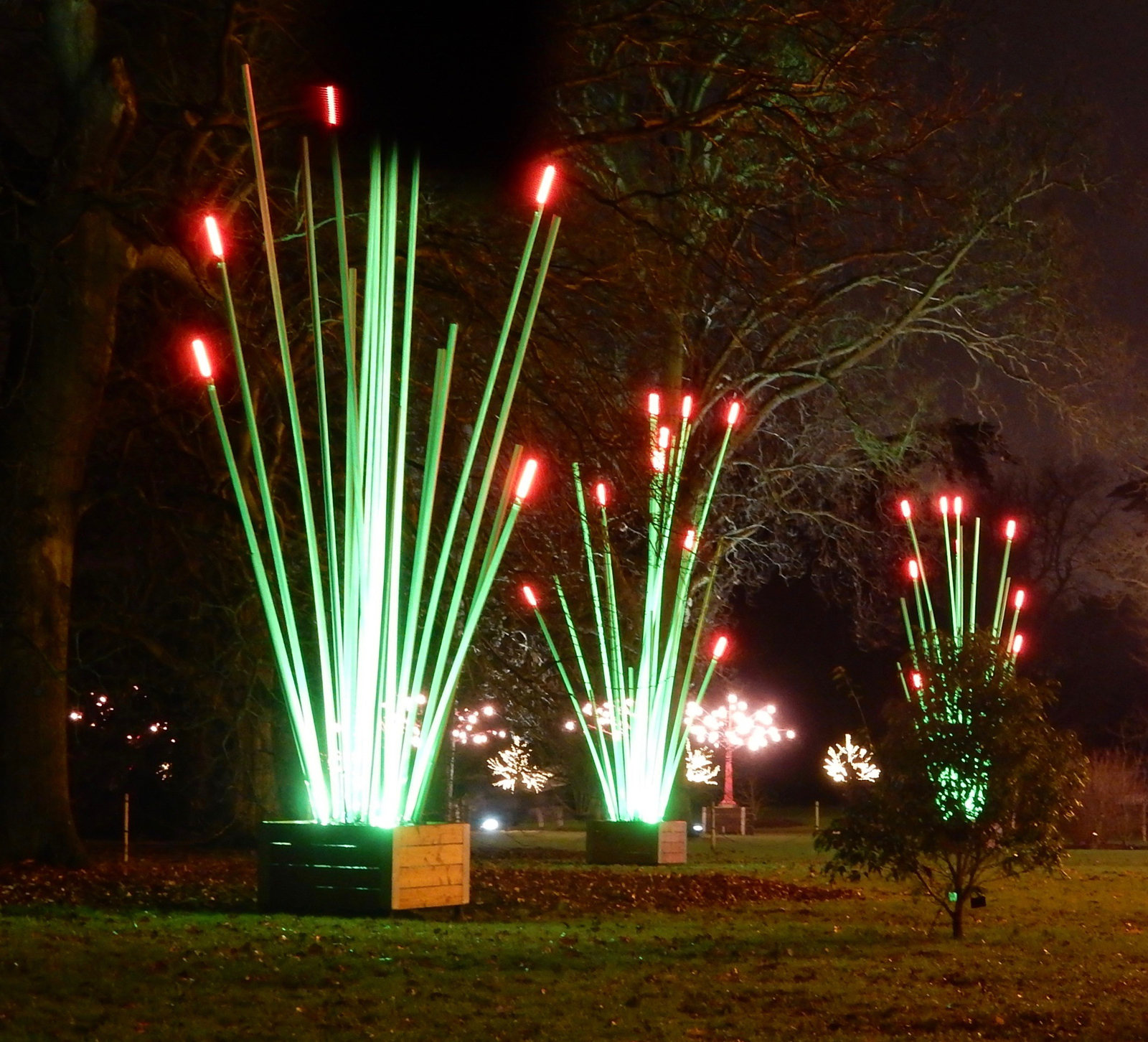 christmas-at-kew-by-fred