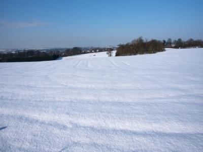 snowscape-by-bob